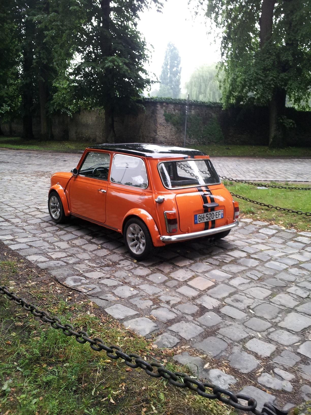 Austin mini 1993